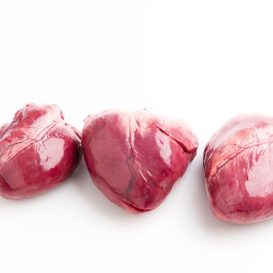 Coração Congelado