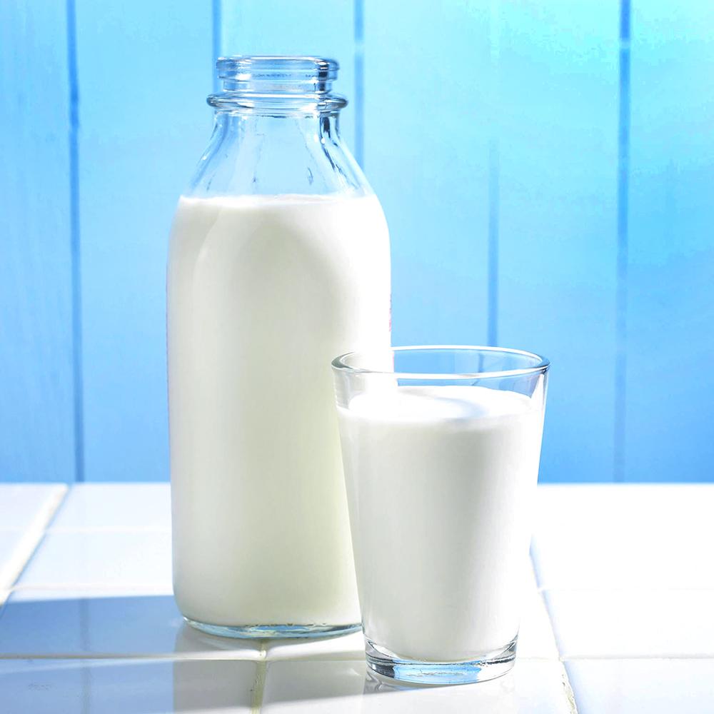 Conheça as principais diferenças entre os variados tipos de leite