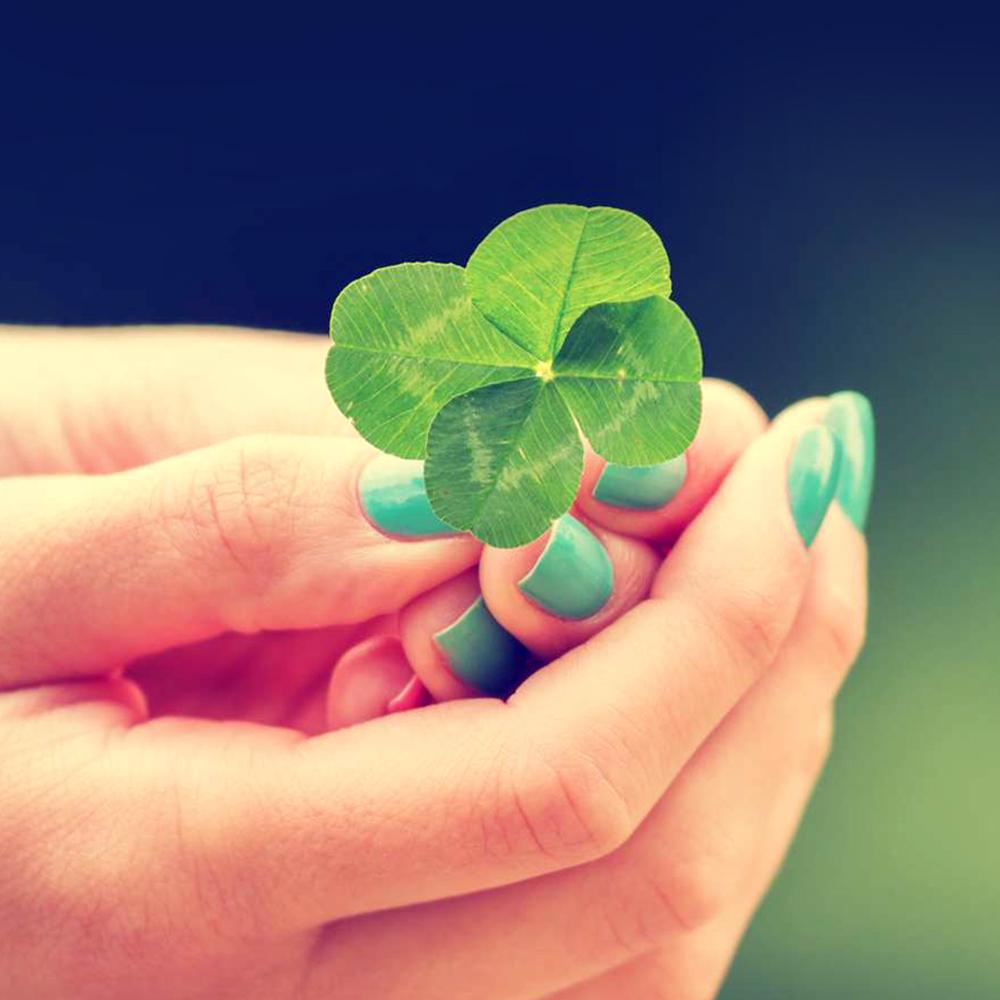 10 atitudes para atrair a sorte